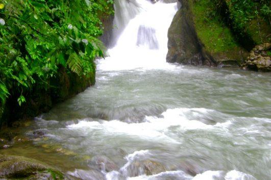 rio Medium