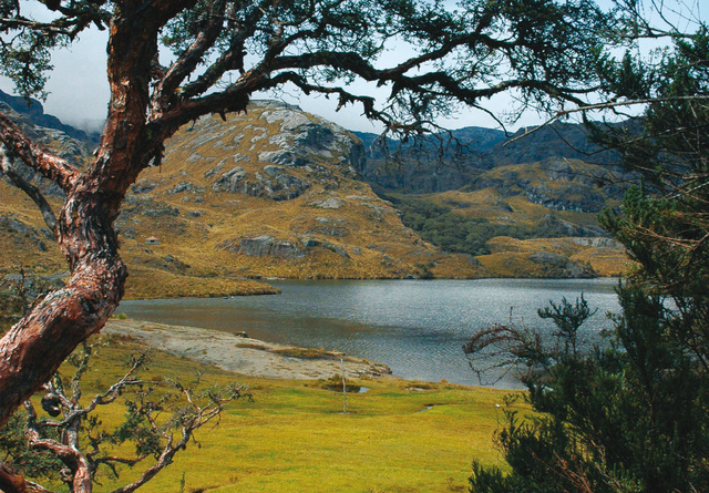 Toreadora Lake