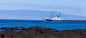 1mv evolution yacht galapagos - Birdwatching Galapagos Cruises