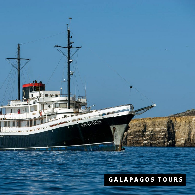 Galapagos Cruise Evolution