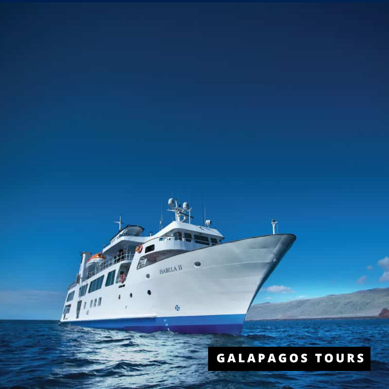 Galapagos Cruises Amp Tours With Free Nights In Our Luxury Lodge