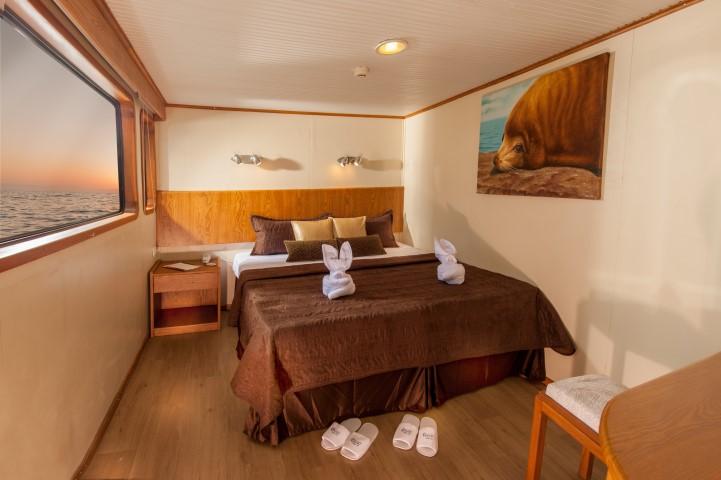 galapagos cruise cabin