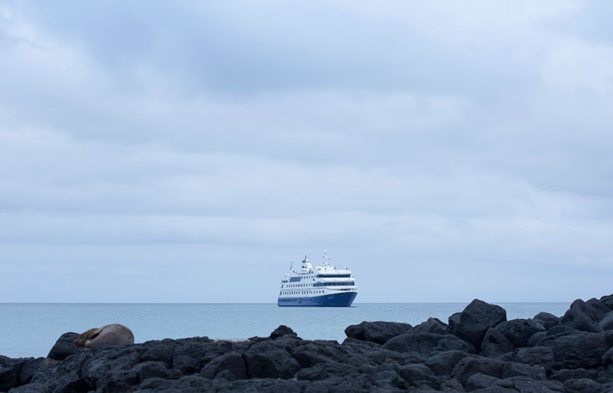 santa-cruz-ii-galapagos-expedition-cruise-880x564