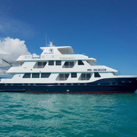 Cormorant 450 - Birdwatching Galapagos Cruises