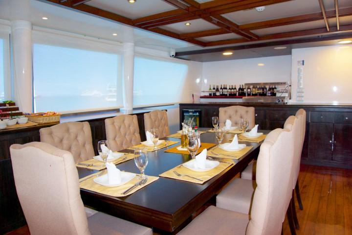 Cormorant interior1 - Birdwatching Galapagos Cruises