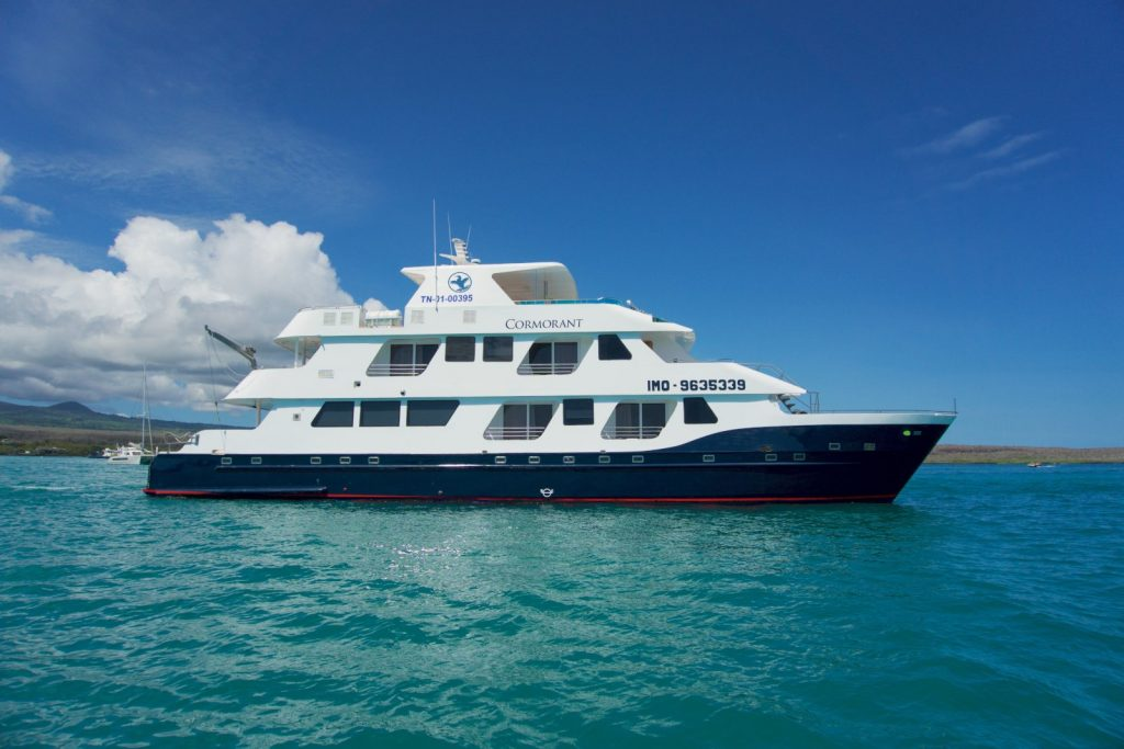 Cormorant slider - Birdwatching Galapagos Cruises