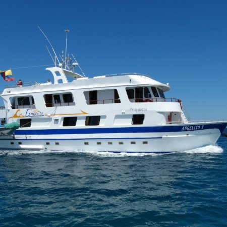 Angelito 450 - Birdwatching Galapagos Cruises