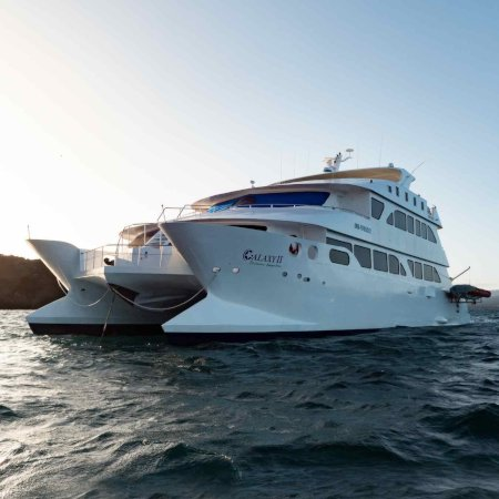 EcoGalaxy 450 - Birdwatching Galapagos Cruises