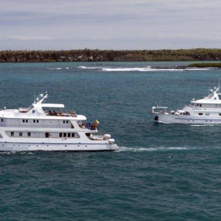 Coral 1 & 2 Galapagos Yachts