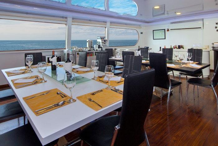Petrel interior4 - Birdwatching Galapagos Cruises