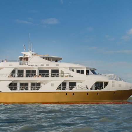 Elite Elite 450 - Birdwatching Galapagos Cruises