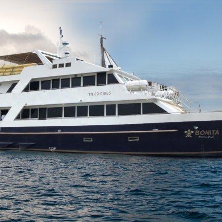 Bonita450 - Birdwatching Galapagos Cruises