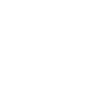 white birds 142 -