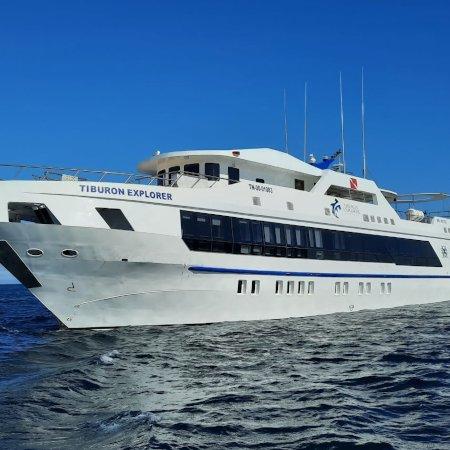 Tiburon Explorer 450 -