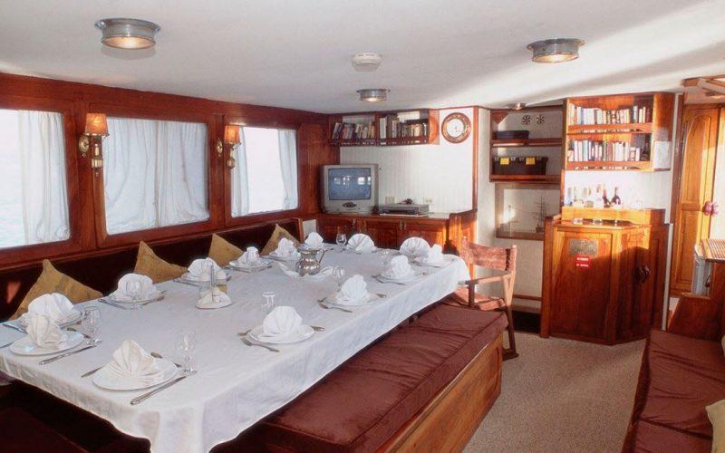 Samba - cabin4
