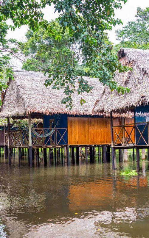 amazon-lodges